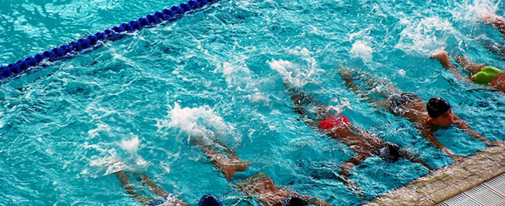 Minis stages de natation à la Toussaint