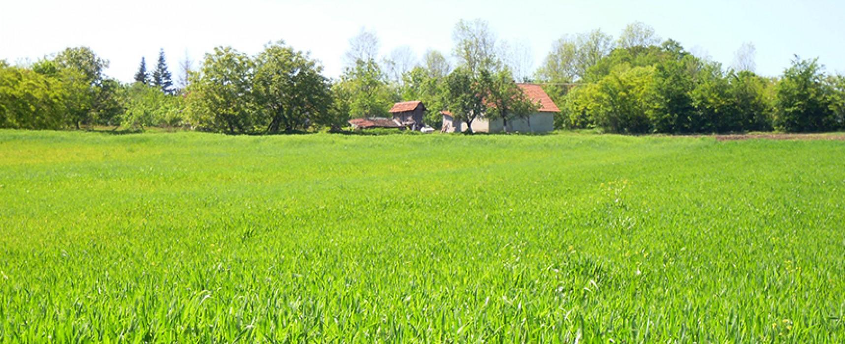 Venez parler foncier agricole le 31/03 à Vallière -Après-midi réservé aux élus-
