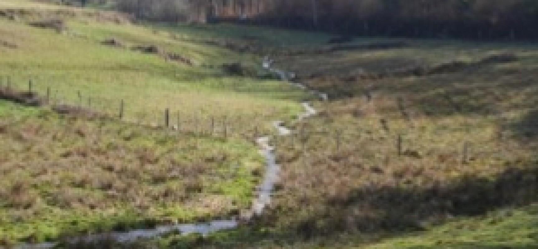 Réunion > Les Zones Humides sur le bassin de  La Creuse (& de La Vienne)