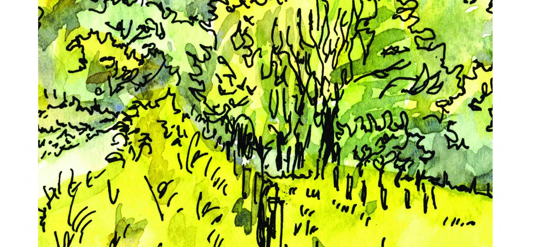 EXPOSITION : «Quelques nuages et autres prétextes à faire des livres» – Dessins de Lénon
