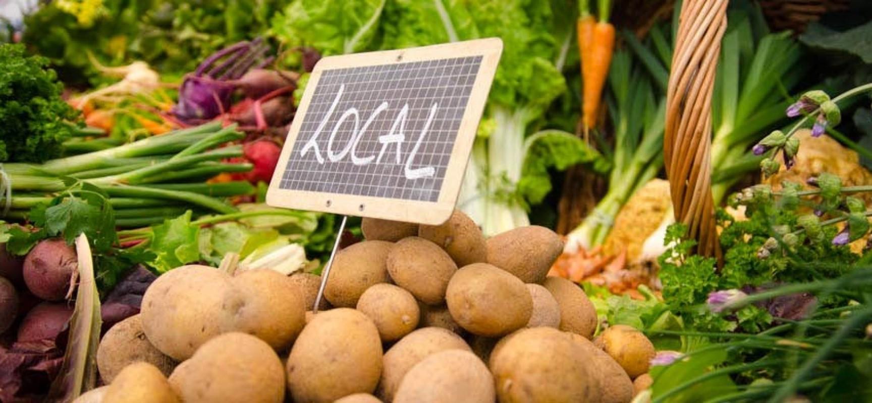 Restauration collective : animations sur l'alimentation locale