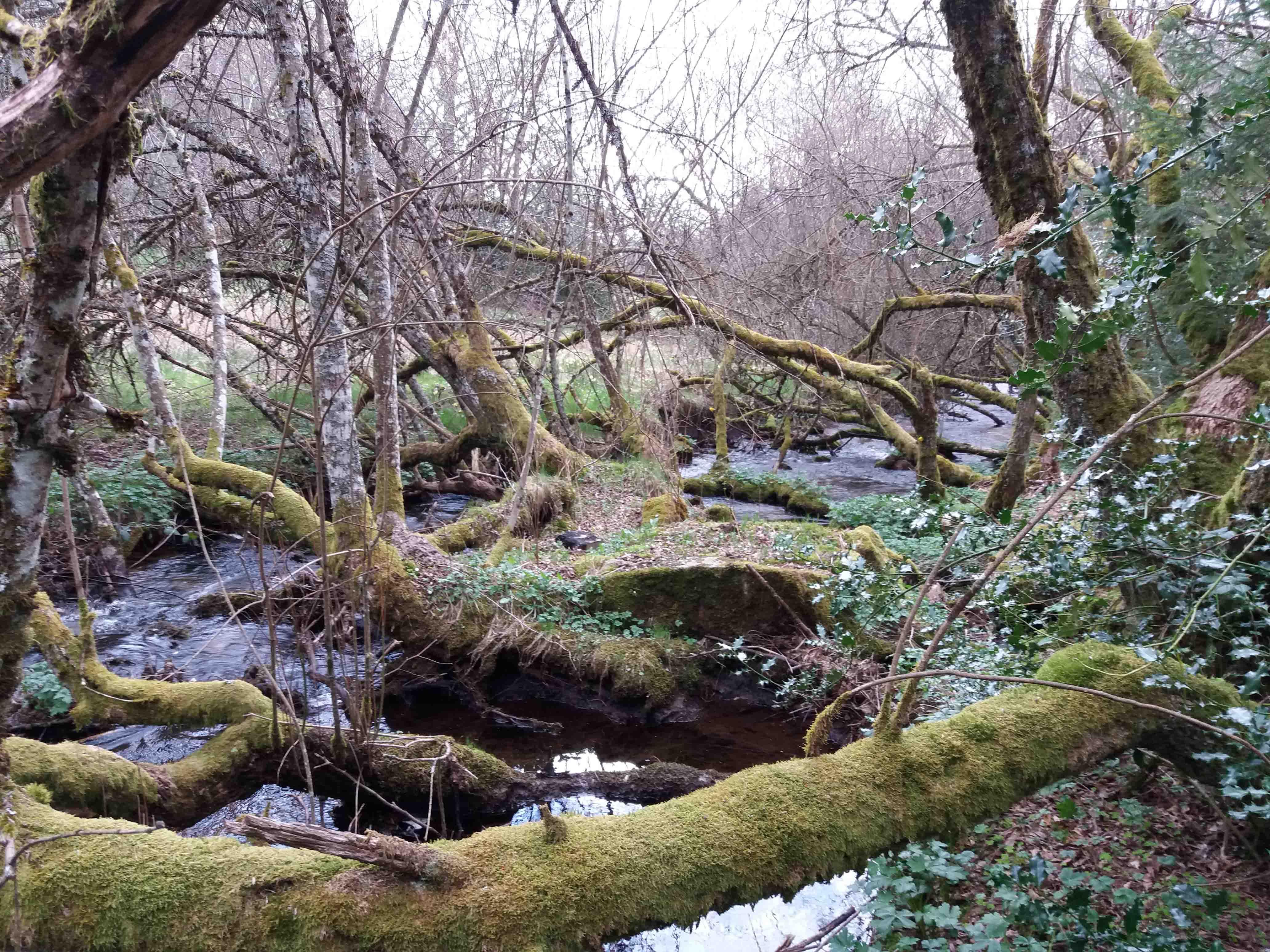 rivières_CGS