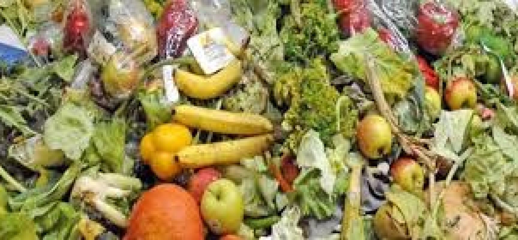 Gaspillage alimentaire : des outils numériques pour aider les artisans